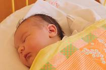 Izabela Steierová se narodila 30. ledna, vážila 3,17 kg a měřila 49 cm. Její maminka Kateřina Steierová z Opavy jí přeje zdraví a krásné lidi okolo ní. Doma se na miminko těší sestřička Rozálie a tatínek Pavel.