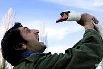 Snímek rakouského režiséra íránského původu Arash T. Riahi Na chvíli svobodni.