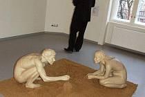Veronika Psotková patří mezi mladé opavské umělce, kteří se jako první představují v galerii Domu umění.