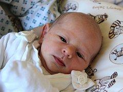 Tereza Novotná se narodila 18. června, vážila 2,65 kilogramů a měřila 48 centimetrů. Rodiče Jana a Roman z Opavy jí do života přejí zdraví a aby se jí splnilo vše, co si bude přát. Na Terezku už doma čeká brácha Kuba.