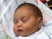 Natálie Vráželová se narodila 17. dubna, vážila 3,78 kilogramů a měřila 52 centimetrů. Rodiče Denisa a Karel z Opavy jí do života přejí zdraví, štěstí a spokojenost. Na Natálku už doma čekají sourozenci Martina a Karel.
