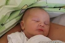 Adam Harazim se narodil 10. srpna 2016, vážil 3,56 kilogramů a měřil 50 centimetrů. Rodiče Lenka a Pavel z Opavy přejí svému prvorozenému synovi do života hodně zdraví a štěstí.