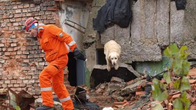 Praktického závodu záchranných psů se letos účastnilo patnáct dvojic.