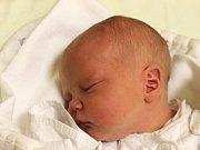 Vendula Šafranková se narodila 8. února, vážila 4,01 kilogramů a měřila 52 centimetrů. Maminka Andrea z Malých Hoštic své dceři přeje, aby se jí v životě dařilo a aby rostla do krásy. Na Vendulku se už doma těší brácha Dominik.