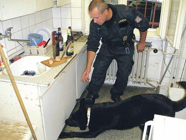 Psovod Jiří Valošek už vycvičil pro policii několik psů. Před Ajaxem to byl Kapitán, se kterým je zachycen při speciálním výcviku na hledání vybušniny.
