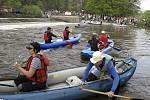 Sjíždění Moravice je bezesporu nejoblíbenější akcí vodních turistů na Opavsku.