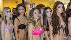 V pořadí třetí zastávka castingu na Českou Miss 2017 se v úterý konala v opavském obchodním centru Breda&Weinstein. Ze 42 přihlášených účastnic nejen z celého kraje, ale třeba také ze Slovenska, se v Opavě nakonec představilo 25 soutěžících.