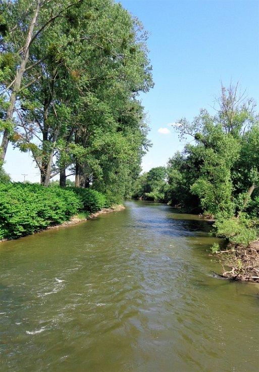 Okolí zatopeného štěrkového dolu u Dolního Benešova.