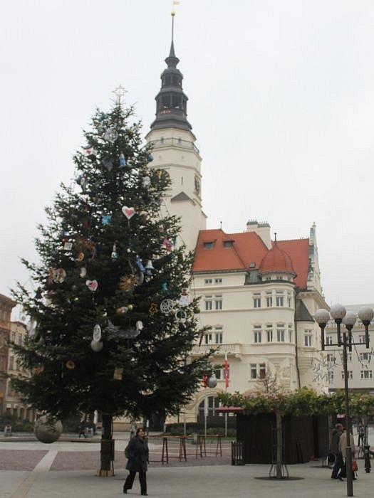 Vánoční strom v Opavě zdobí Horní náměstí.