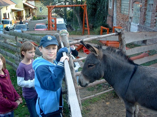 Návštěva veterinární stanice v Opavě-Jaktaři.