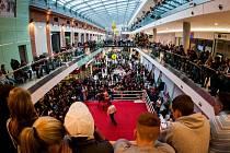 V obchodním centru Breda v sobotu proběhl první ročník OC Breda cupu v thaiboxu a boxu.