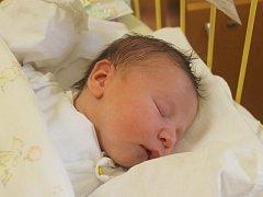 """Vanesa Bendíková se narodila 28. listopadu, vážila 3,24 kg a měřila 51 cm. Na miminko se už doma těší dva sourozenci. """"Hodně štěstí a zdraví,"""" popřáli své dceři do života rodiče Romana Bendíková a Lukáš Demel z Opavy."""