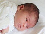 Valerie Holušová se narodila 9. srpna, vážila 3,73 kilogramů a měřila 50 centimetrů. Rodiče Zuzana a Martin z Opavy jí přejí, aby měla šťastný život. Na Valerii už doma čekají sourozenci Vanesa, Dagmar a Kristián.