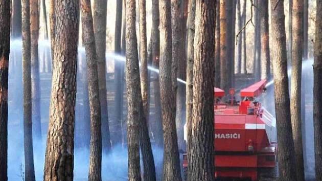 Do bzence přijela hasit rozsáhlý lesní požár i jednotka z Hlučína.
