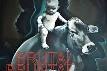 Obálka knihy Brutal Bruntal.