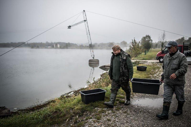 První z mnoha výsadeb uskutečnili rybáři v pátek ráno u Hlučínského jezera. Postupně do něj vysadili amura bílého a candáta obecného.
