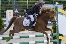 Jezdecký klub Kateřinky poprvé připravil prestižní Národní skokový pohár ČJF a Styl šampionát PONY 2017. Na jeho kolbišti se ho během víkendu zúčastnili mladí čeští, slovenští a polští jezdci se svýmiponíky.