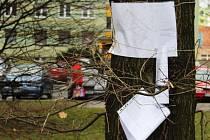 Takhle to v Kateřinkách u Šrámkovy ulice momentálně vypadá. Lidé si pozvánky na veřejné jednání chodí číst ke stromům.