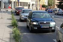 Půl metru vysoký plevel a obilí mezi chodníkem a vozovkou na Praskově ulici.