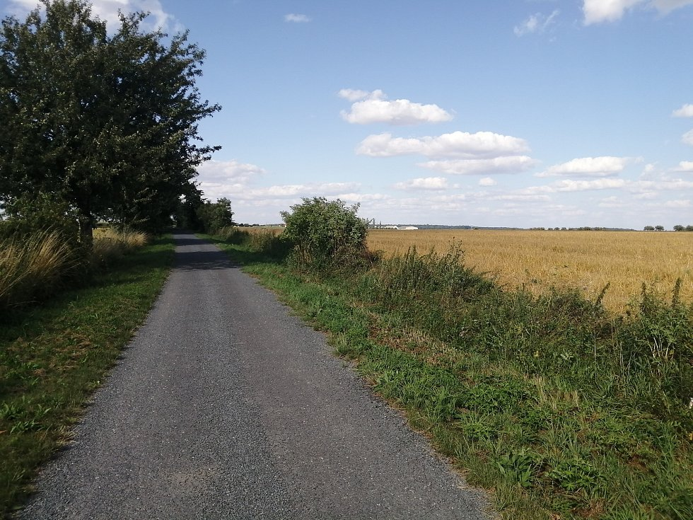 Místní asfaltová komunikace směrem na Oldřišov. 29. července 2021, Opava, Oldřišov.