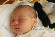 Tereza Schwarzová se narodila 6. srpna 2016, vážila 4,07 kilogramů a měřila 54 centimetrů. Rodiče Lucie a Petr z Kozmic své prvorozené dceři přejí, ať je v životě zdravá.