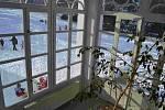 Domov se zvláštním režimem - výhled ze zimní zahrady