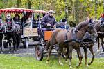 Hubertova jízda, která se konala uplynulou sobotu ve Velkých Hošticích, přilákala přibližně stovku lidí.