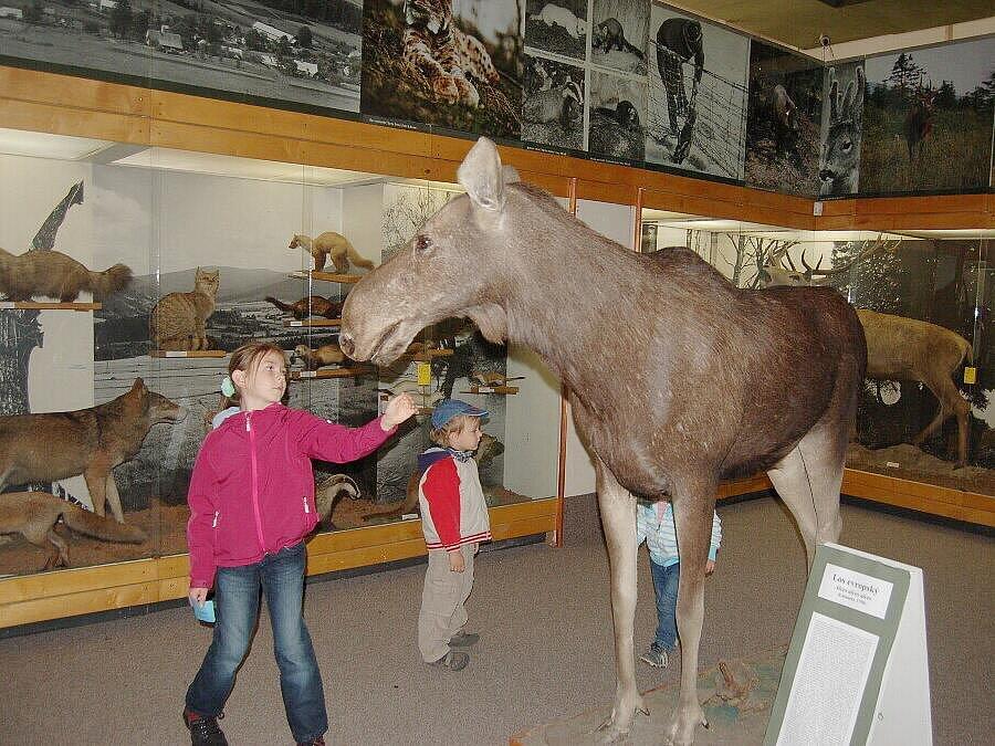 Do pátečního dne měli zájemci možnost navštívit historickou výstavní budovu Slezského zemského muzea v Opavě.