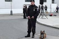 Nedaleko obce Davidovo v Makedonii byl při kontrole okolí uštknut český policejní pes Adebayor. Ade je šestiletý belgický ovčák, který společně se svým psovodem sloužil v Makedonii jako hlídka při kontrole schengenské hranice, kterou střežili.