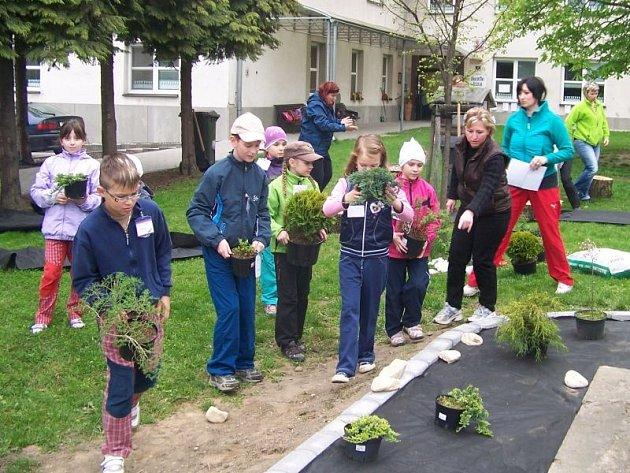 Žáci ZŠ Darkovičky upravovali okolí školy.