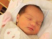 Melis Redžepi se narodila 14. ledna, vážila 3,32 kilogramu a měřila 49 centimetrů. Rodiče Ajlan a Metin z Makedonie přejí své dceři do života zdraví a štěstí. Na Melis se už doma těší bratr Tamer.