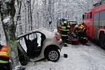Po nárazu auta do stromu zůstal řidič v bezvědomí.