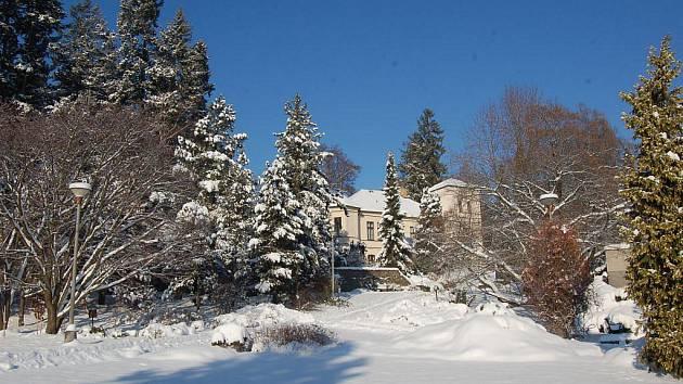 Kouzelné zimní atmosféře v Arboretu schází už pouze více návštěvníků.