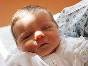 Karolína Hříbková se narodila 14. března, vážila 2,70 kilogramů a měřila 48 centimetrů. Rodiče Silvie a Pavel z Bolatic jí přejí zdraví, štěstí a aby se jí líbilo na světě. Na Karolínku se už doma těší sourozenci Filípek a Terezka.
