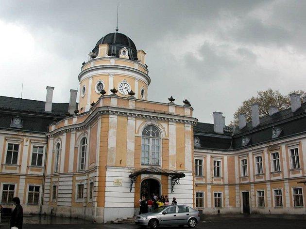 Zámek v Šilheřovicích je na prodej.
