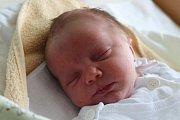 Charlotta Kocurová se narodila 30. prosince 2018, vážila 2,70 kilogramu a měřila 46 centimetrů. Rodiče Nikola a Roman z Bohuslavic přejí své dceři zdraví, štěstí a ať hezky roste. Na Charlottu už doma čeká sestra Vanesa.
