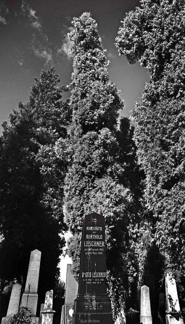 Ochutnávka z výstavy Židovské hřbitovy, fotografie pochází právě z Opavy.