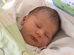 Ondřej Otipka se narodil 5. prosince, vážil 3,34 kilogramů a měřil 49 centimetrů. Rodiče Lenka a Stanislav z Opavy přejí svému prvorozenému synovi do života zdraví a štěstí.