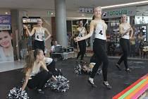 Středa se v útrobách Obchodního centra Breda & Weinstein nesla ve znamení Veletrhu volnočasových aktivit.