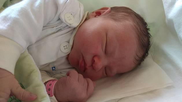 Sandra Klemensová se narodila 30. září 2019, vážila 3,82 kilogramu a měřila 52 centimetrů. Rodiče Šárka a Karel z Kravař přejí své dceři do života zdraví a štěstí. Na Sandru už doma čekají sourozenci Sebastian, Sára, Karel a Stela.
