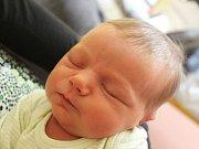 Amálie Janottová se narodila 29. června, vážila 3,10 kilogramů a měřila 48 centimetrů. Rodiče Věra a Jakub z Opavy přejí své prvorozené dceři aby byla zdravá a měla spokojený život.