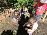 NA ZAHRADĚ Mateřské školy Havlíčkovy nově funguje miniarboretum. Foto: Markéta Langrová