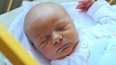 Tereza Rybářová se narodila 3. prosince, vážila 3,42 kilogramu a měřila 51 centimetrů. Rodiče Anna a Jan ze Štítiny přejí své prvorozené dceři do života zdraví, štěstí a aby byla stále usměvavá.