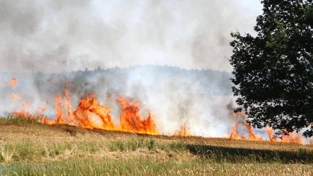 Jeden hektar obilí hořel v neděli v Chuchelné. Hasiči jej lokalizovali za devět minut a zasahovalo celkem sedm jednotek. Hmotná škoda byla čtyřiadvacet tisíc.
