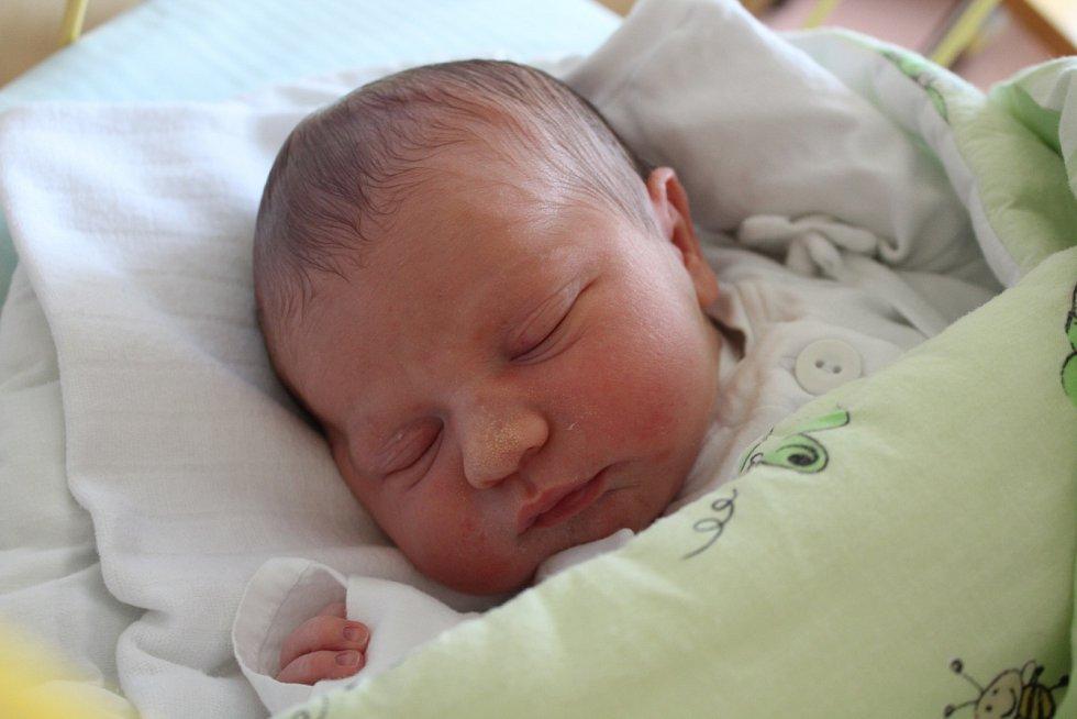 Adam Vegel se narodil 10. ledna 2019, vážil 3,48 kilogramu a měřil 51 centimetrů. Rodiče Pavlína a Petr z Držkovic mu přejí, aby byl v životě zdravý a stejně šikovný, jako jeho sourozenci. Na Adámka už doma čekají sestry Agáta a Laura a bráška Petr.