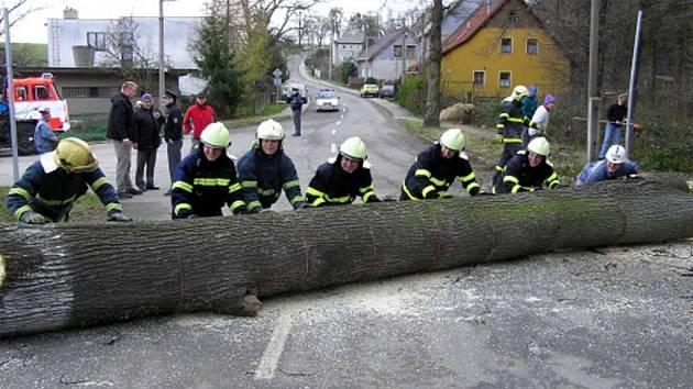 Tři jednotky hasičů zasahovaly v neděli dopoledne v Opavě-Komárovských Chaloupkách. Hasiči zde museli skácet a pak rozřezat na kusy starou dutou lípu o průměru cca 80 cm.