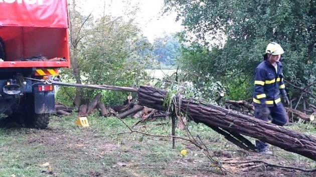 Kmeny z koryta řeky Dyje museli záchranáři odklidit.