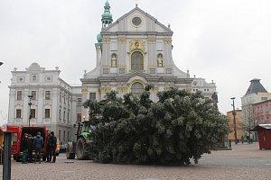 Stavění vánočního stromu na Dolním náměstí v Opavě