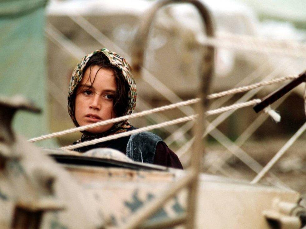 Snímek Želvy mohou létat získal šest ocenění. Mimo jiné také zvláštní uznání na Mezinárodním filmovém festivalu v Berlíně.