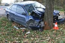 Čtyři z pěti členů osádky Audi A4, které v sobotu 10. listopadu dopoledne bouralo na silnici mezi Dolním Benešovem a Kravařemi, skončilo s více či méně závažnými poraněními v nemocnici.
